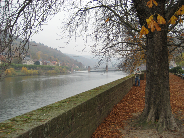 RhineRiver